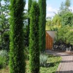 Garten bei Hessenbett Ronneburg